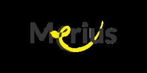 Merius Hypotheek - Laagste Hypotheekrente - Hypotheek Aanvragen - De HypotheekStore